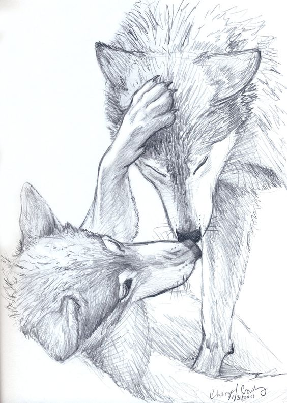 Wolves sketch by *silvercrossfox How to draw Wolves, , how to draw ...