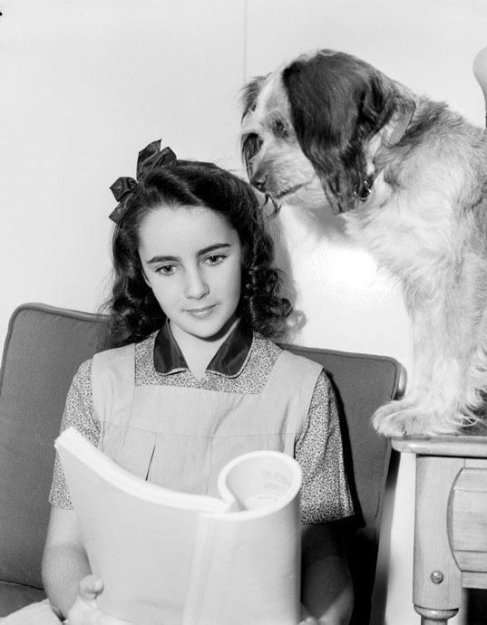 elizabeth taylor with her script for quotnational velvet