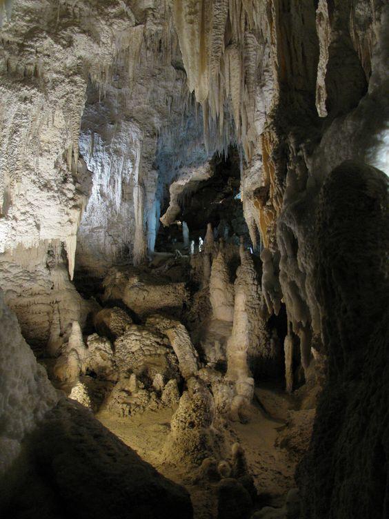 'Waitomo Caves'  - Waitomo Caves, Waikato, New Zealand CC.