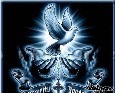 34 Awesome espirito santo gif images