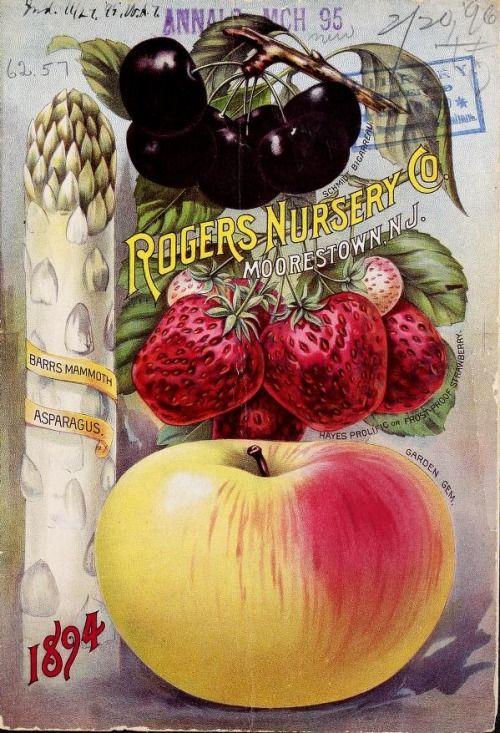 Rogers Nursery Co  1894: