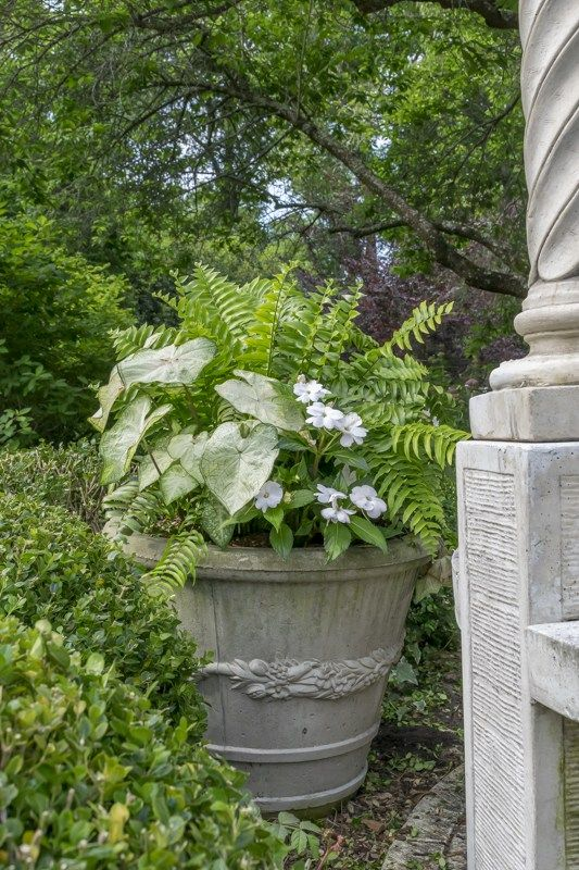Container Gardening: Thrillers, Fillers And Spillers   Gardens