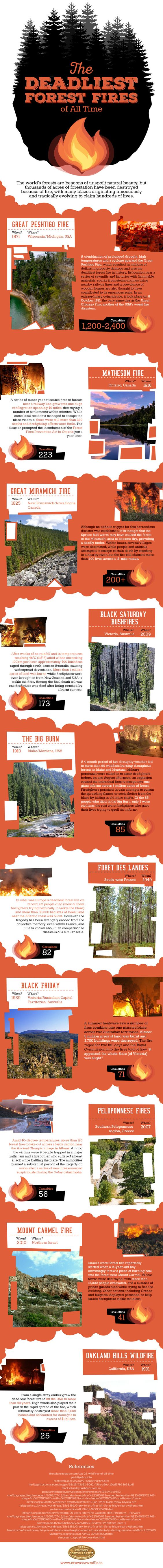 The Deadliest Forest Fires of All Time – Infographic