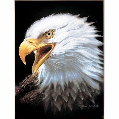 Charlton Home Lueck Extra Heavy Queen Size Eagle Spirit Blanket Bald Eagle Eagle Painting Eagle Pictures