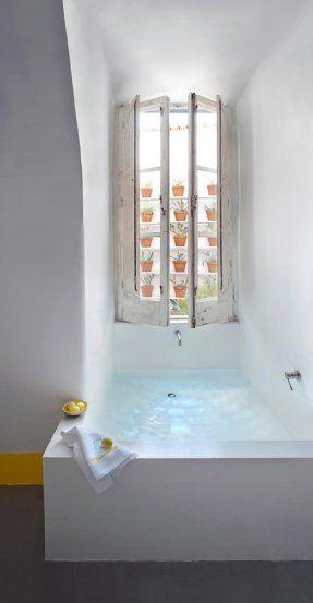 succulents bath window treatments bathroom windows capri the window ...