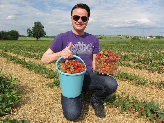 Leckere Erdbeeren...