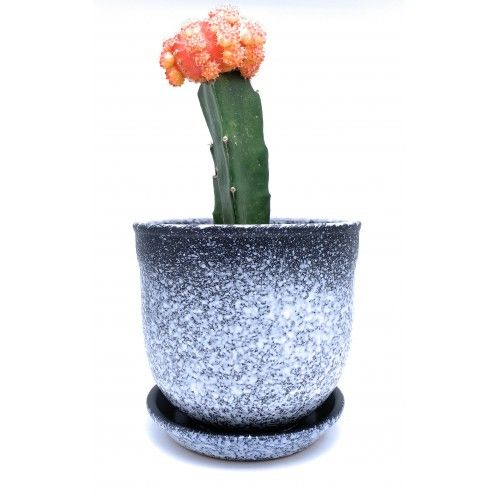 Glazed Ceramic Plant Pot With Saucer Ring Black White House Plant Pots Ceramic Plant Pots Glazed Ceramic