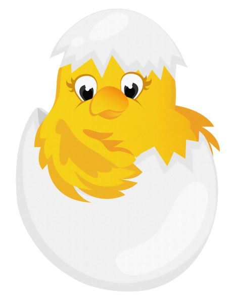 Easter Png Chicken In Egg Transparent PNG Clipart