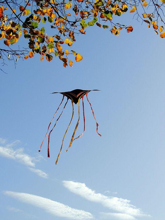 Herbst.... Drachenzeit.......
