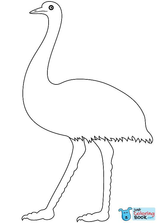 Walking Emu Coloring Page Free Printable Coloring Pages Throughout