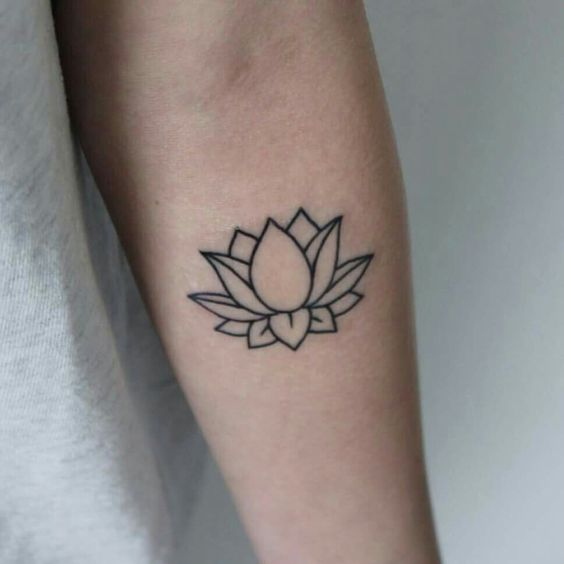 Lotus outline, want this