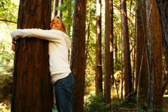 Nuestros antepasados buscaban un árbol para abrazarse a su tronco – Técnicas Orientales http://www.yoespiritual.com/terapias-alternativas/nuestros-antepasados-buscaban-un-arbol-para-abrazarse-a-su-tronco-tecnicas-orientales.html