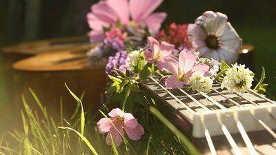 Há flores por todos os lados, há flores em tudo que eu vejo...