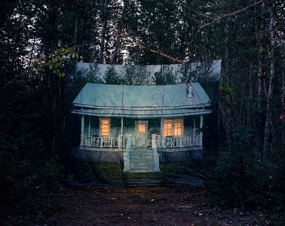 Lens culture Sarah Fuller  The Forest of No Return/ The Homecoming