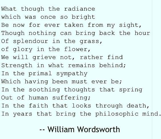Splendor in the Grass by William Wordsworth
