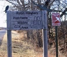 Byron State Fish Hatchery & Watchable Wildlife Area | TravelOK.com - Oklahoma's Official Travel & Tourism Site