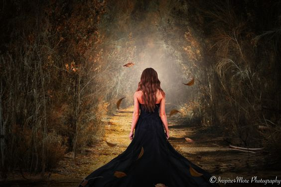 Into the Light by Shaenie Wintle