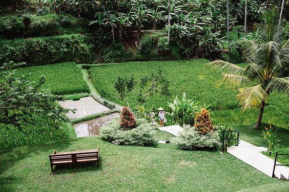 Four Seasons Bali At Sayan // Simple + Beyond #fourseasons #bali