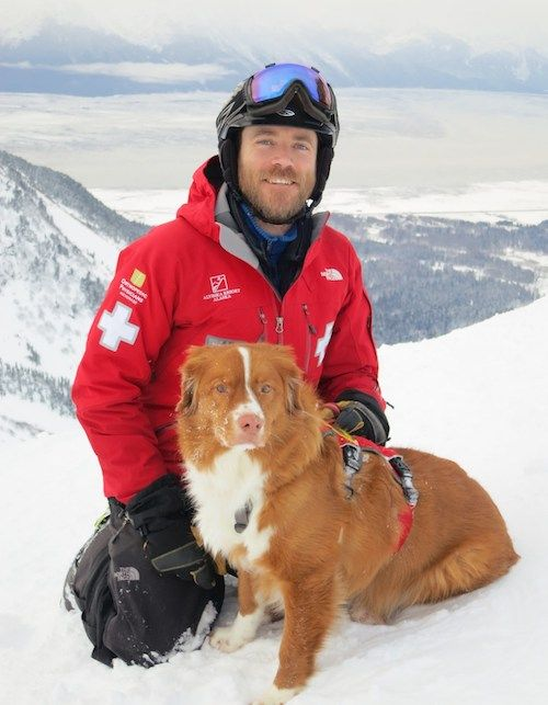 Their Avalanche Breed Of Choice May Surprise You Nova Scotia
