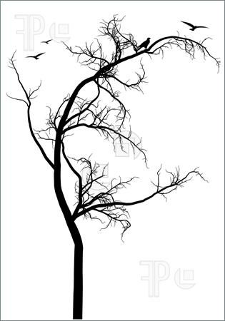 Simple Black Tree Silhouette Simple black tree silhouette
