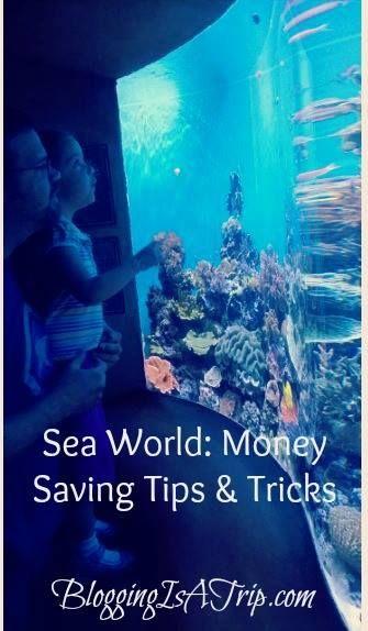 SeaWorld Tips and Tricks Orlando Location #Travel #Travel Tips http://bloggingisatrip.com/seaworld-tips-and-tricks/