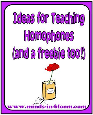 Ideas for Teaching Homophones plus a Freebie! from Minds in Bloom