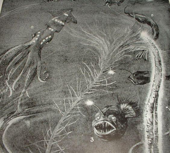 1922 LUMINOUS FISH A DeepSea Scene Antique Black by theCandyShoppe, $5.00