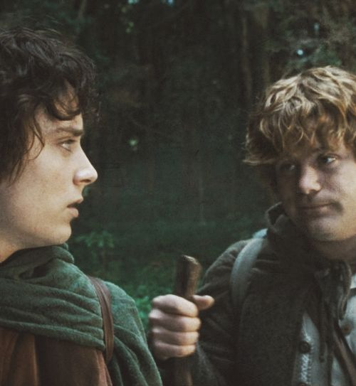 frodo and sam relationship