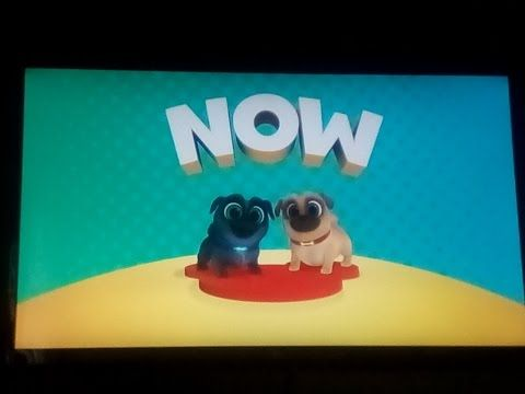 Bow To The Wow Now Puppy Dog Pals On Disney Junior My Most Viewed Video Youtube Dogs And Puppies Disney Junior Wow Products