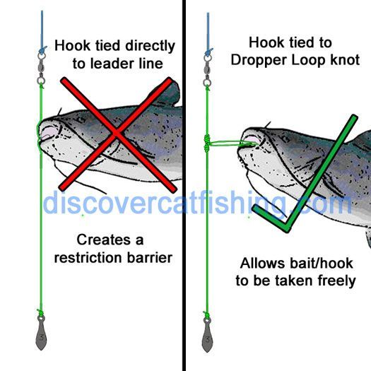 Drop shot rig kentucky rig for catfishing in heavy cover for Catfish fishing gear