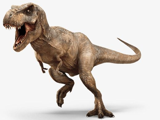 Tyrannosaurus Rex Modelo Dinosaurio Png Dinosaurios Imagenes Dinosaurios