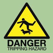 Dachshund tripping hazard