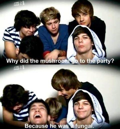 I loved Zayn's over reaction to that joke, it was so cute!!!