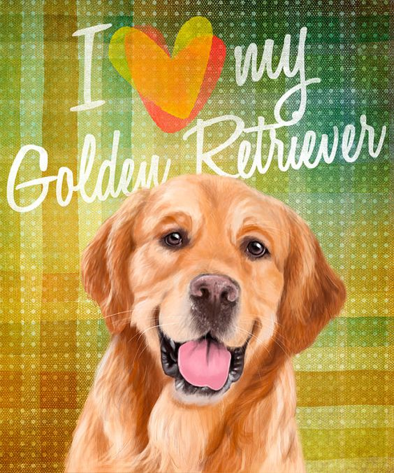 I love my dog A Golden Retriever on colorful by SparaFuori on Etsy, $20.00