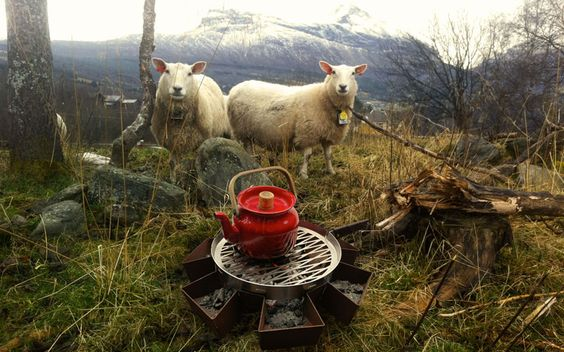this is the outdoor life.   nice compilation with the sheep  ;-)