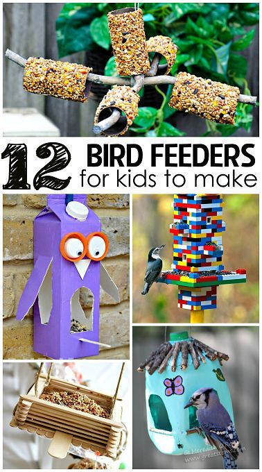 The Coolest Bird Feeders for Kids to Make! Great arts and crafts idea plus they can do some bird watching!: