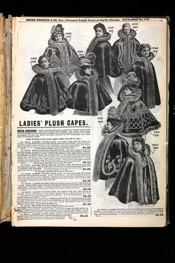 Everyday Fashions of the Twenties As Pictured in Sears and Other Catalogs Dover Fashion and Costumes