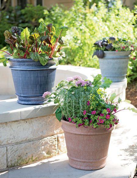 27854665f94a308192bdb165b811393d - Gardeners Supply Self Watering Window Box