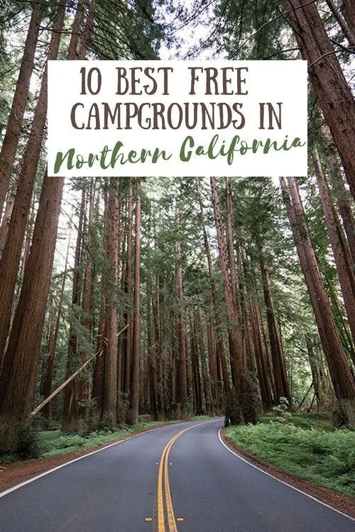 10 Best Free Campgrounds In Northern California California Travel Road Trips Northern California Camping Northern California Road Trip
