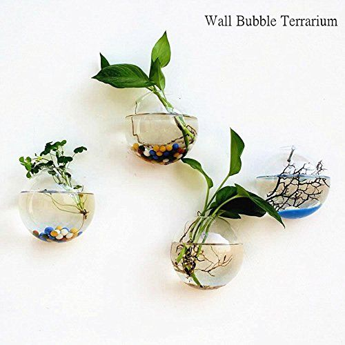 Pack Of 4 Clear Glass Wall Bubble Terrariums Top Opening Https Www Amazon Com Dp B078s1235w Ref Cm With Images Hanging Flower Pots Wall Terrarium Glass Flower Vases