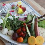 SUZU CAFE - 料理写真:新鮮なお野菜で作る特製バーニャカウダ