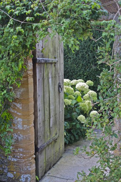 Garden gate ideas and French Country garden inspiration: A rustic planked Old World Medieval garden gate to a secret garden with hydrangea. #gardengate #frenchcountry #hydrangea #rusticdoor