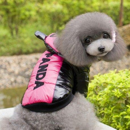 Chubasquero para perro, moderno y original, acolchado para protegerle también…