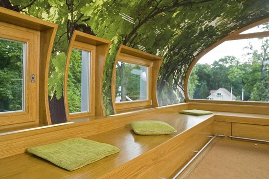 Kid tree houses trees and kid on pinterest for Inside amazing homes