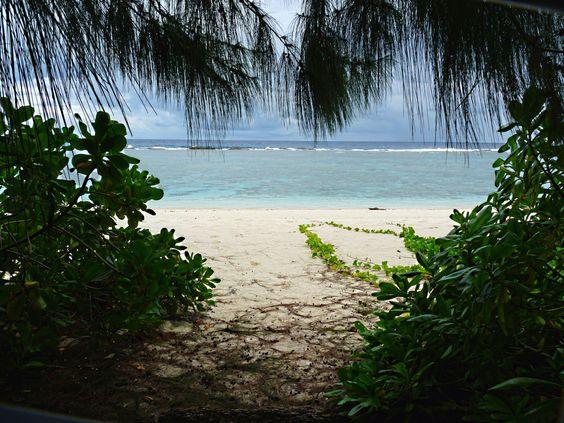茂みの中から観るビーチ