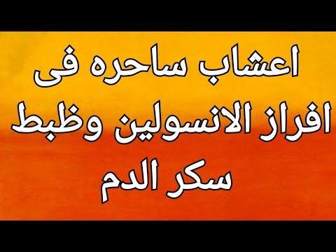 اعشاب ساحره فى افراز الانسولين وظبط سكر الدم Youtube Cooking Recipes Arabic Food Health Education