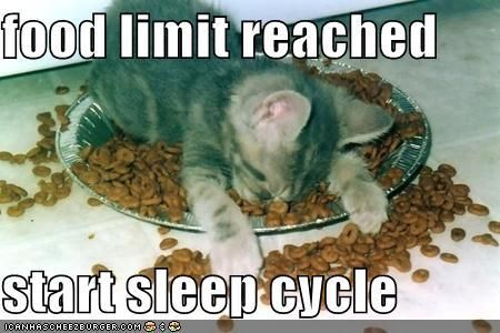food limit reached commence sleep cycle