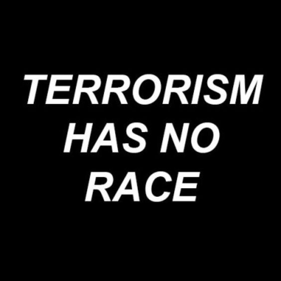 I believe this picture is relevant to the recent attack on Paris. Many people blame the Muslims for the attack when there is no proof that the terrorists are Muslim. Anyone can be a terrorist; Caucasian, African American, Christian, Catholic. It does not matter. A terrorist can be anyone.:
