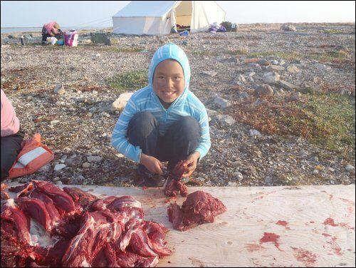 hunting in nunavut