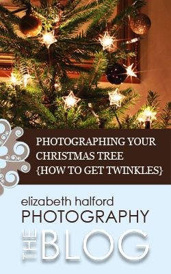 Wonder how to get your Christmas tree to twinkle in photos? Your wondering stops here! (I'm going to do this tonight!)